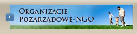 Organizacje Pozarządowe-NGO